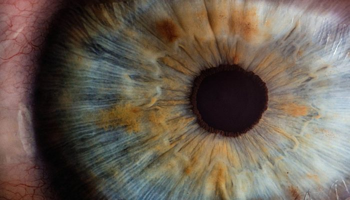 iris-eye-close-up